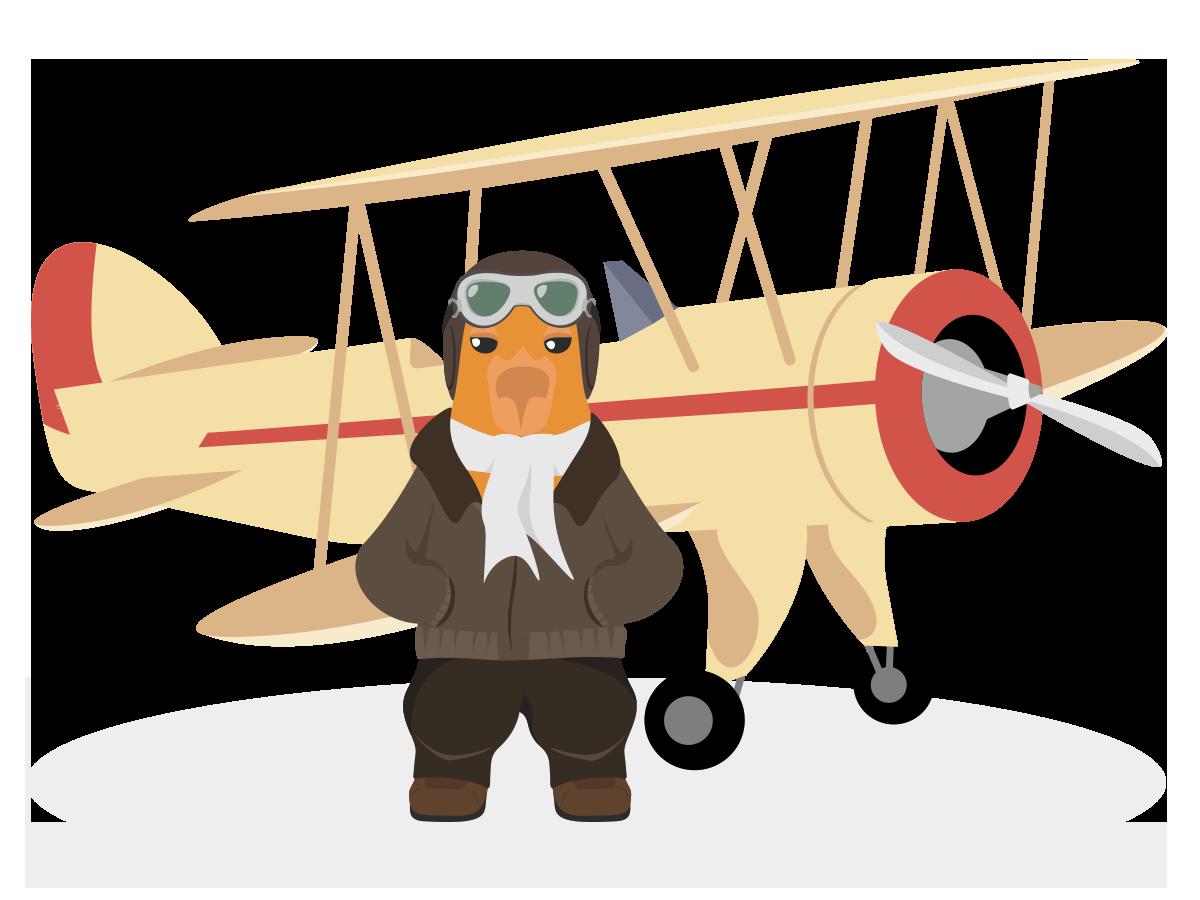 Bara pilot